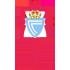 https://ximg.enetscores.com/cdnimg/amalthea/logo/teamlogo/9910